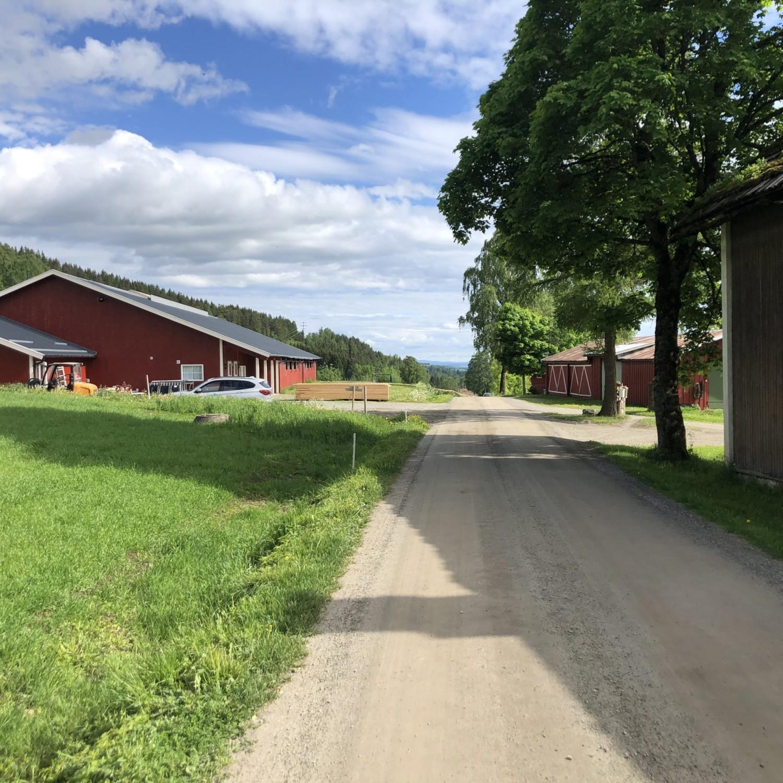 Landbruksbygg i tre